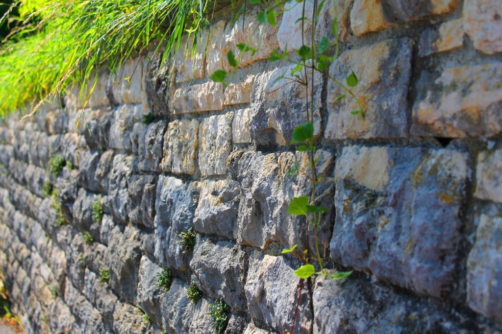 Schaffhausen_wall